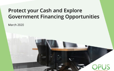 Protect your Cash and Explore Government Financing Opportunities